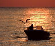Checking the Traps. Fisherman and friends checking the traps at dawn.  Shot in Galveston Bay, Texas Stock Images