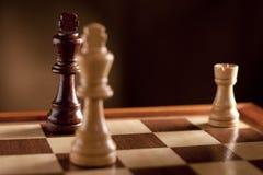 checkmate шахмат Стоковая Фотография