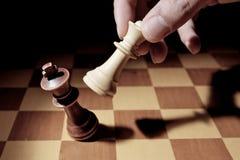 checkmate Стоковые Изображения RF