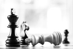 Checkmate black defeats white king. Selective focus royalty free stock photography