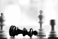 Checkmate white defeats black king. Selective focus royalty free stock image