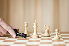 Checkmate, winning concept Royalty Free Stock Images
