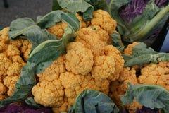 Chedarbloemkool, Brassica oleracea var botrytis Stock Afbeeldingen