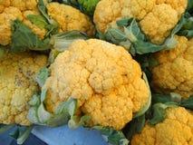 Cheddar cauliflower, Brassica oleracea botrytis 'Cheddar' Royalty Free Stock Photos