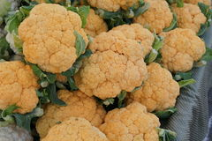 Cheddar cauliflower. Brassica oleracea var. botrytis, cultivar with golden yellow compact heads, rich in nutrients particularly betacarotenes and antioxidants stock photos