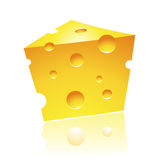 Cheddar Cheese with Reflection Royalty Free Stock Image