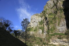 Cheddar Gorge Stock Photos