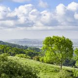 Cheddar Gorge Summer. The view from the top of Cheddar Gorge in Somerset, looking across the Somerset Levels towards Glastonbury Tor, as seen during the Gorge Stock Photography