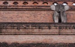 Chedi在chiangmai的luang寺庙古老塔  库存图片
