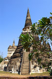 Chedi Stock Images