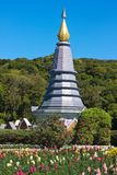 Chedi on Doi Inthanon. New special Yong, Thailand Royalty Free Stock Images