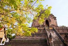 Chedi Luang temple. Big Pagoda at Chedi Luang temple in summer, Chiang Mai, Thailand Royalty Free Stock Images