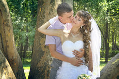 Cheeck kiss. Young groom kisses his bride`s cheeck in the park in the shadow of giant platan Stock Image