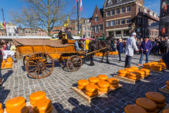 Cheee market Gouda city Royalty Free Stock Images