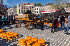 Cheee market Gouda city Royalty Free Stock Photo