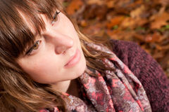 Cheek in the autumn Royalty Free Stock Photography
