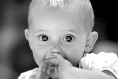 Cheeky Child. Black and white image of a cheeky child looking straight ahead Royalty Free Stock Photography
