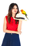 Cheeky Cockatiel parrot and woman the white background. Stock Photo