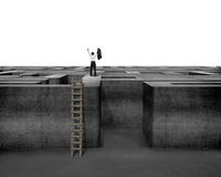 Cheered businessman standing on top of maze wall with ladder Royalty Free Stock Photo