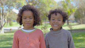 Cheerful African American brother and sister in park stock video