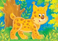 Cheerful animals 20. Illustration for children. A series Cheerful animals. Lynx Stock Photo
