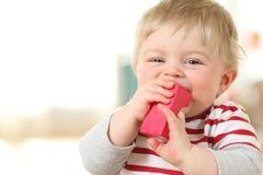 Cheerful baby biting a toy an looking you. At home Stock Photography