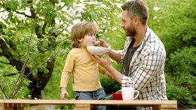 Cheerful baby child eats food itself with spoon. Happy father with his son playing at autumn park. Hungry little boy stock video footage