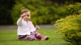 A cheerful baby-girl is sitting on the green grass near the bush in the city park. stock footage