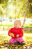 Cheerful baby play with yellow leafs Royalty Free Stock Images