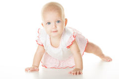 Cheerful baby six months old Stock Images