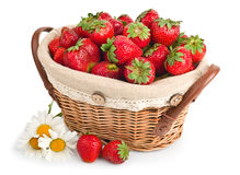 Cheerful basket full with fresh ripe strawberries Stock Photos