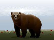 Cheerful bear Royalty Free Stock Images