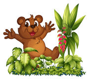 A cheerful bear Stock Images