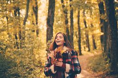Cheerful beautiful girl in red sweater outdoors on beautiful fall day. Autumnal mood. Romantic Young Woman on Natural. Background Outdoors. Portrait of stock photo