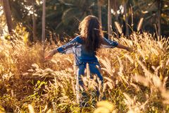 Cheerful beautiful young woman having fun on a field at sunset stock images