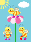 Cheerful bees Stock Photos