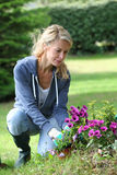 Cheerful blond woman planting flowers. In garden Royalty Free Stock Image