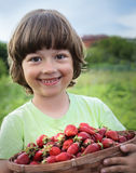 Cheerful boy with  basket Stock Images