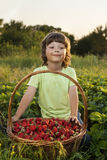 Cheerful boy with basket   berries Royalty Free Stock Photos