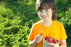 Cheerful boy with a basket of berries Royalty Free Stock Photography