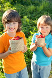 Cheerful boy with basket of berries Royalty Free Stock Image