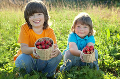 Cheerful boy with basket of berries Stock Photography