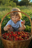 Cheerful boy with   berries Royalty Free Stock Photography