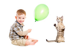 Cheerful boy and cat Royalty Free Stock Photo