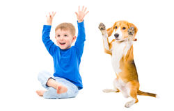 Cheerful boy and dog Royalty Free Stock Photo