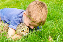 Cheerful boy hugging cat Royalty Free Stock Photo