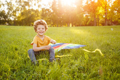 Cheerful boy on meadow with kite Stock Photos