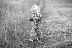Cheerful boy in nature Royalty Free Stock Image
