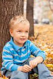 Cheerful boy sitting on yellow foliage . Royalty Free Stock Image