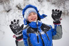 Cheerful boy sledding Royalty Free Stock Photography